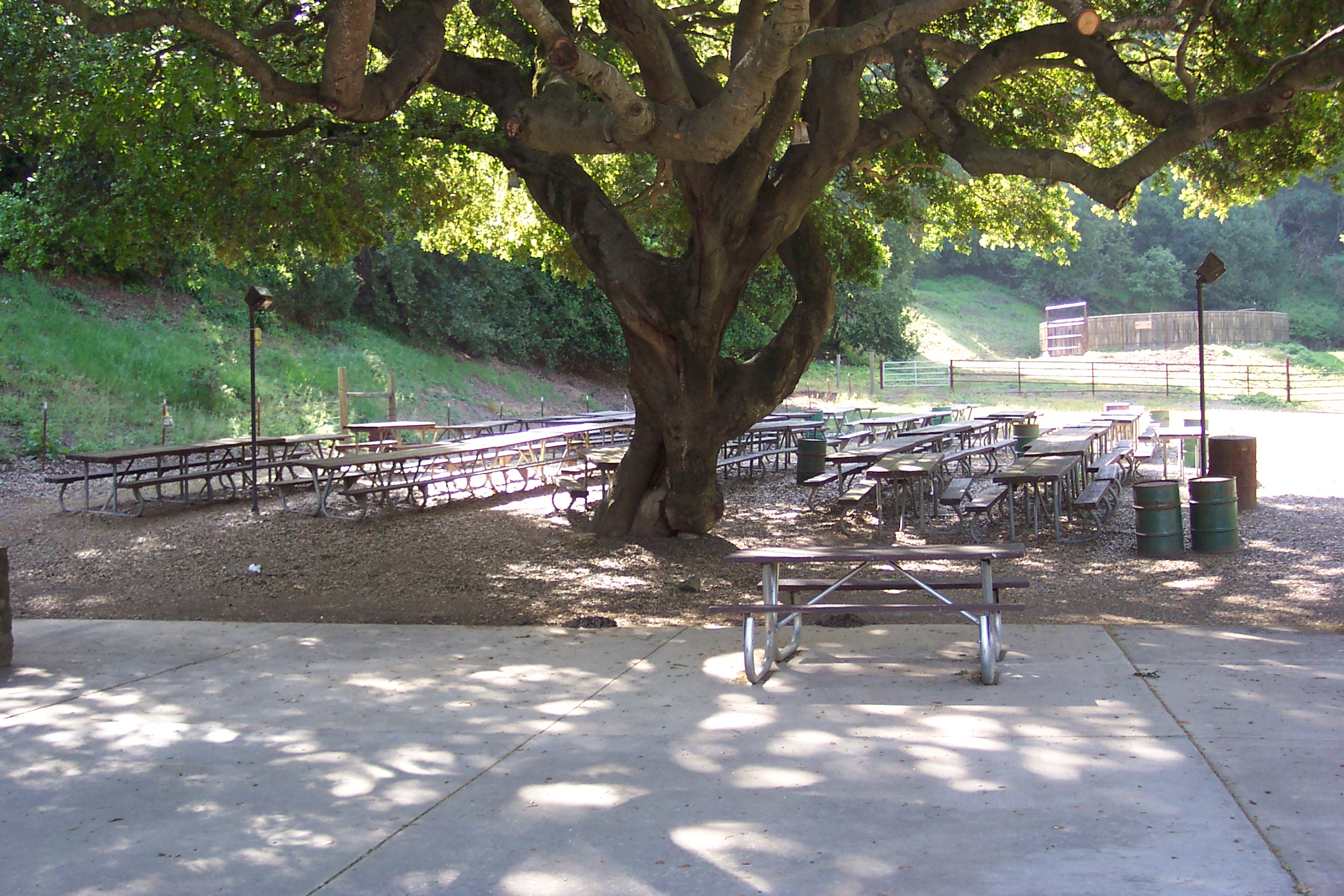 Rowell Ranch Picnic Area