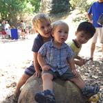 Boys sit on a tortoise at reptile rally
